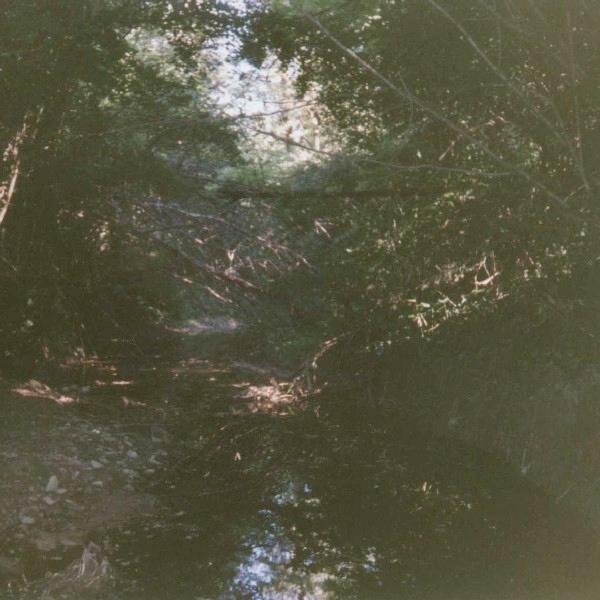 Corso d'acqua buio e stretto fra due rive di vegetazione incolta.
